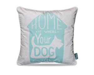 Home Dog Turquoise